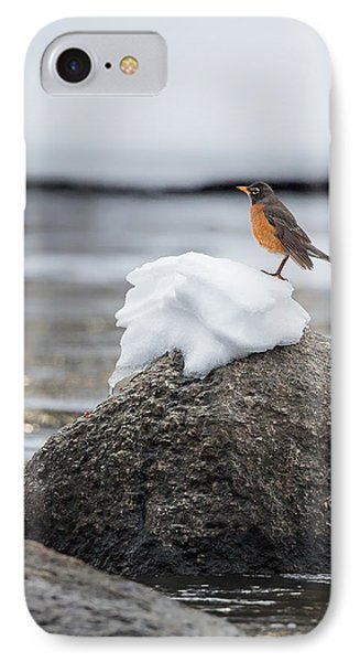 Waiting For Spring IPhone Case by Bill Wakeley