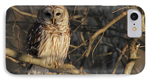 Waiting For Supper Phone Case by Lori Deiter