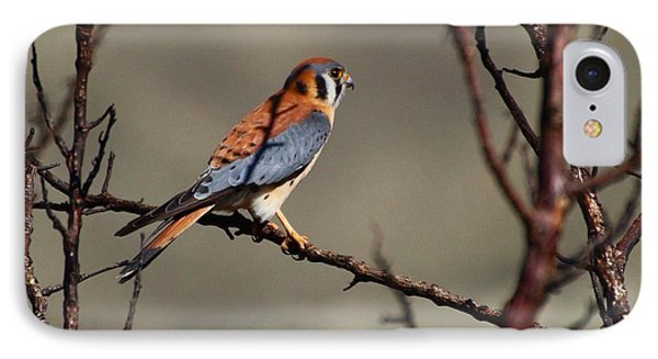 IPhone Case featuring the photograph Waiting by Lynn Hopwood