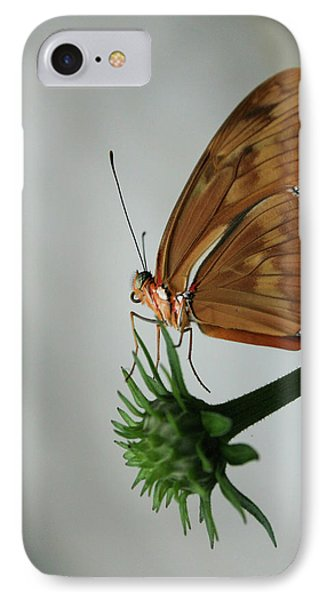Butterfly Waiting On The Wind  IPhone Case by Cathy Harper