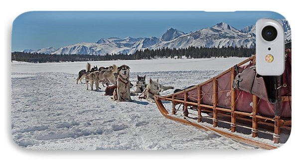 IPhone Case featuring the photograph Waiting Sled Dogs  by Duncan Selby