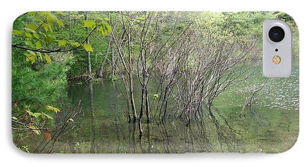 Walden Pond IPhone Case by Catherine Gagne