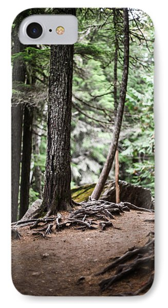 Walk With Me IPhone Case by Aaron Aldrich