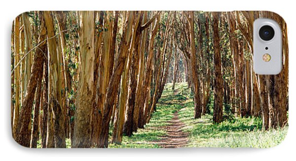 Walkway Passing Through A Forest, The IPhone Case