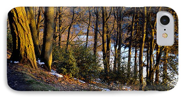 Walkway Passing Through The Forest IPhone Case by Panoramic Images