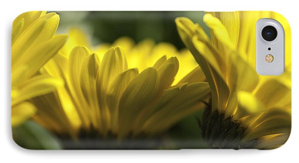 Wall Flowers Phone Case by Fran Riley