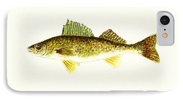 Walleye IPhone Case by Michael Vigliotti
