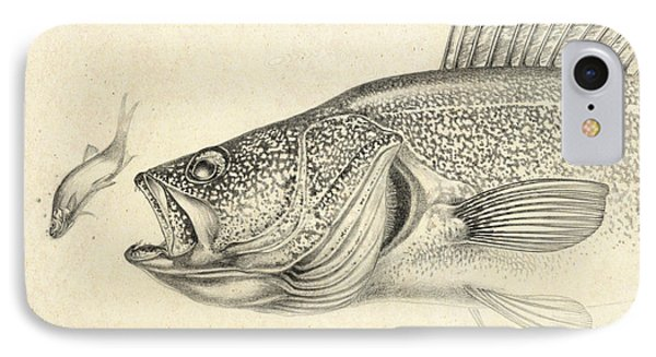 Walleye Pencil Study IPhone Case by Jon Q Wright