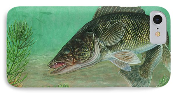 Walleye Sander Vitreus IPhone Case by Carlyn Iverson