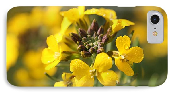 Wallflowers Phone Case by Mark Severn