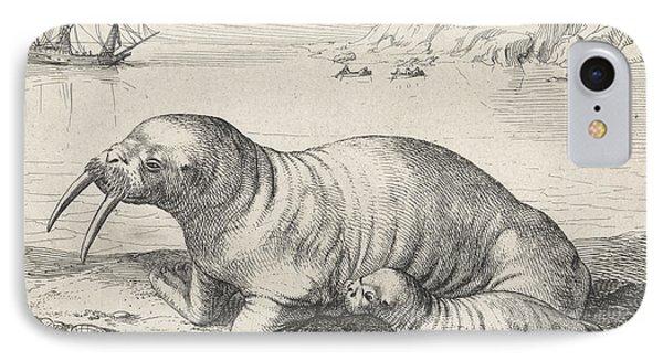 Walrus In Spitsbergen Svalbard Norway, Hessel Gerritsz IPhone Case