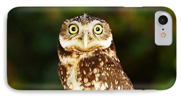 Wanna Have A Staring Contest? IPhone Case