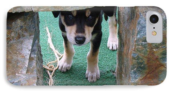 Wannabe Sled Dog In The Yukon IPhone Case