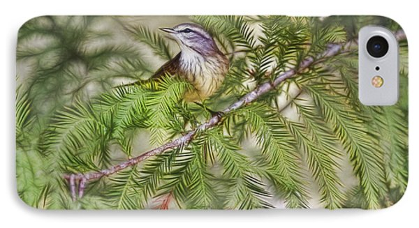 Warbler In The Cypress Phone Case by Deborah Benoit