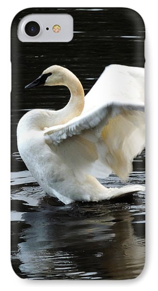 IPhone Case featuring the photograph Ward Lake Swan by Karen Horn