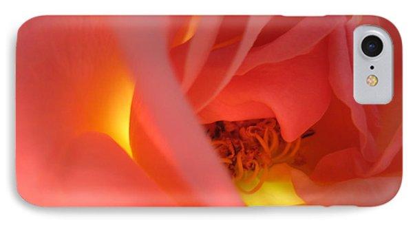 Warm Glow Pink Rose 2 IPhone Case