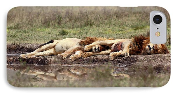 Lion iPhone 7 Case - Warriors At Rest by Arik Kaneh