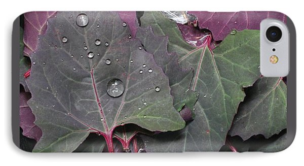 Washing Purple Orach IPhone Case by Patricia Overmoyer