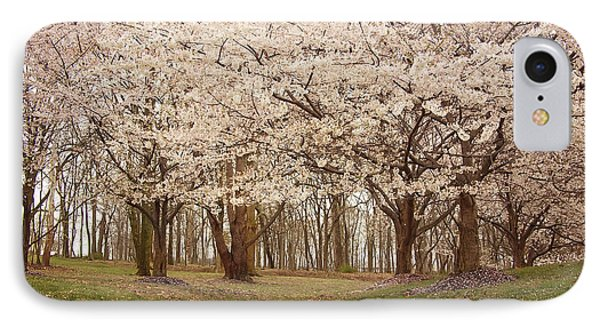 Washington Dc Cherry Blossoms Phone Case by Kim Hojnacki