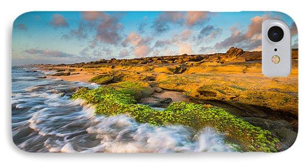 Washington Oaks State Park Coquina Rocks Beach St. Augustine Fl Beaches Phone Case by Dave Allen