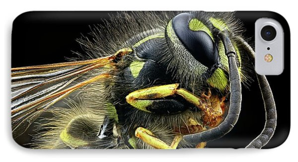 Wasp IPhone Case by Frank Fox