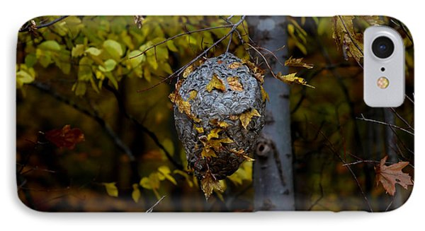 Wasp's Nest IPhone Case by Jerome Lynch