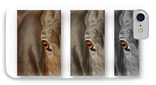 Watchful Triptych IPhone Case