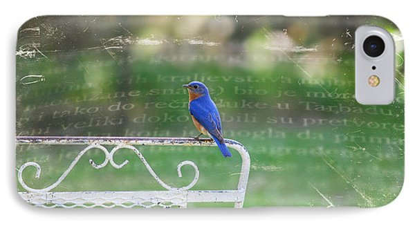 IPhone Case featuring the photograph Watchful Bird by Linda Segerson