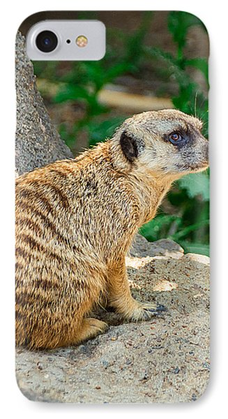 Meerkat iPhone 7 Case - Watchful Meerkat Vertical by Jon Woodhams