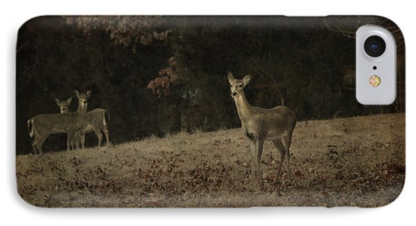 IPhone Case featuring the photograph Watching From A Distance by Linda Segerson