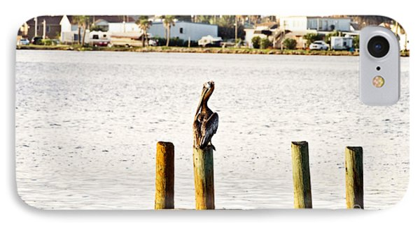 Watching Over The Bay Phone Case by Scott Pellegrin