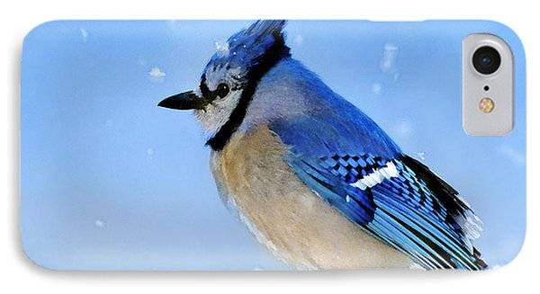 Watching The Snow IPhone 7 Case by Betty LaRue