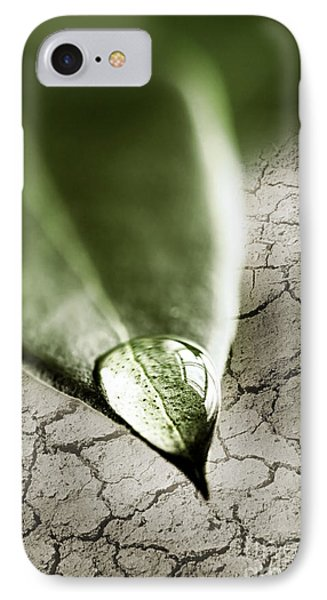 Water Drop On Green Leaf Phone Case by Elena Elisseeva