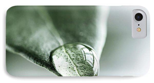 Water Drop On Leaf Phone Case by Elena Elisseeva