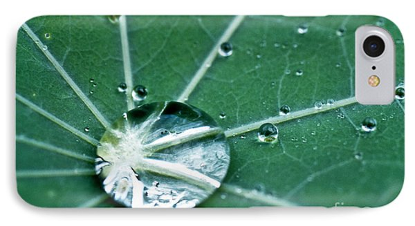 Water Droplet On A Lotus Leaf Phone Case by Heiko Koehrer-Wagner