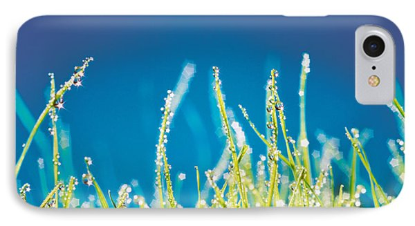 Water Droplets On Blades Of Grass IPhone Case by Panoramic Images