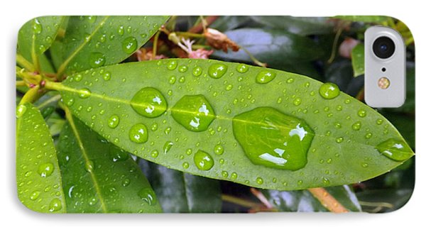 Water Droplets On Leaf IPhone Case