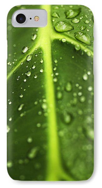 Water Drops On A Leaf IPhone Case by Vishwanath Bhat