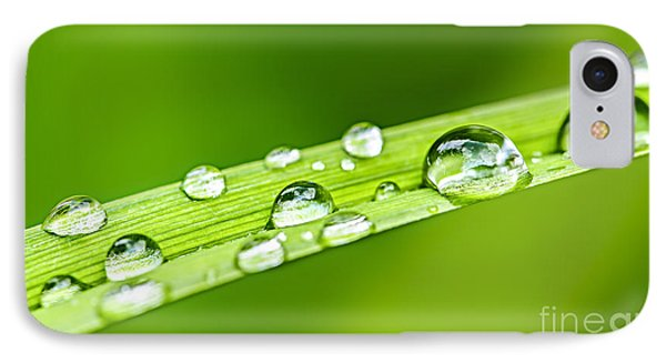 Water Drops On Grass Blade Phone Case by Elena Elisseeva
