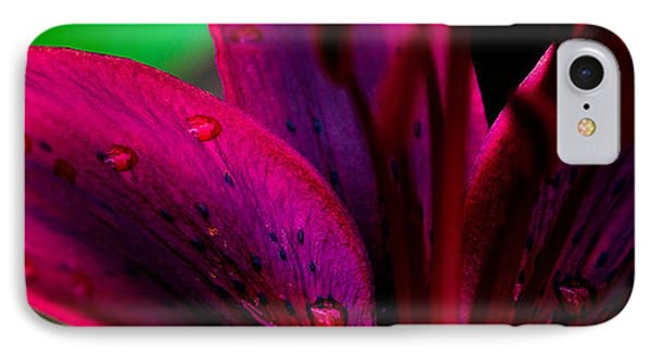 Water-drops On The Petal IPhone Case by Shelby  Young