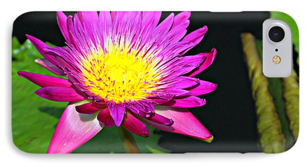 IPhone Case featuring the photograph Water Flower 10089 by Marty Koch