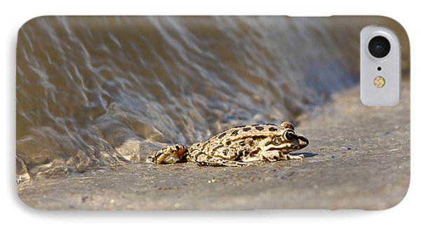 Water Frog Close Up  IPhone Case by Odon Czintos