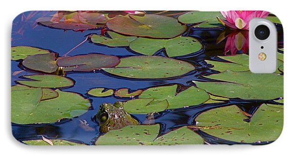 Peek-a-boo Frog IPhone Case by Rita Mueller
