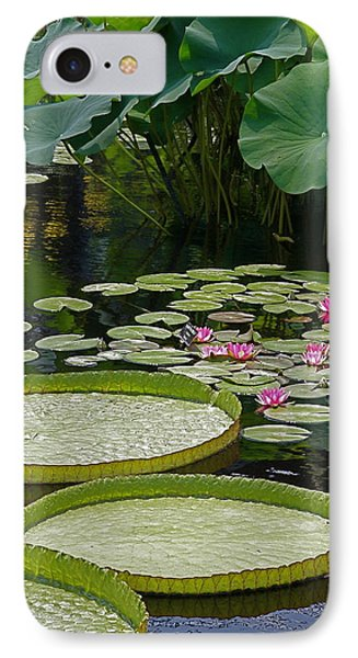 IPhone Case featuring the photograph Water Lilies And Platters And Lotus Leaves by Byron Varvarigos