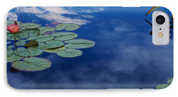 Water Lilies In A Pond, Denver Botanic IPhone Case by Panoramic Images