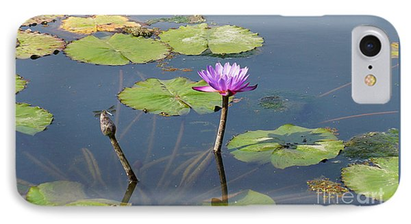 Water Lily And Dragon Fly One IPhone Case by J Jaiam