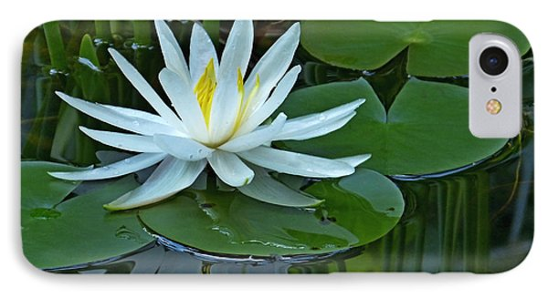 Water Lily And Reflection IPhone Case by Pete Trenholm