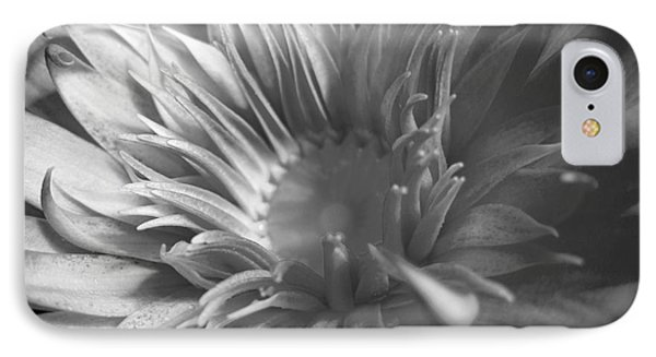 Water Lily B N W IPhone Case by Angela Murray