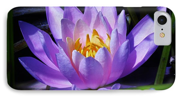 Water Lily Blues IPhone Case by Sherman Perry
