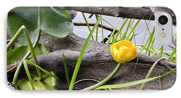 IPhone Case featuring the photograph Water Lily by Cathy Mahnke